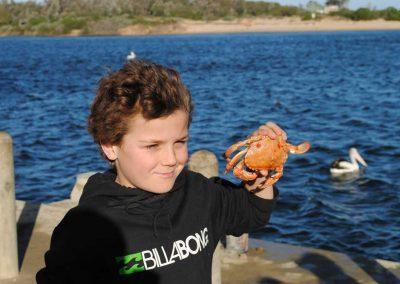 fp-crab
